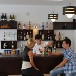 Pensiunea Ecaterina - Bar