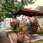 Cabana Andreea - Gradina
