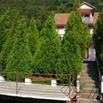 Cabana Andreea